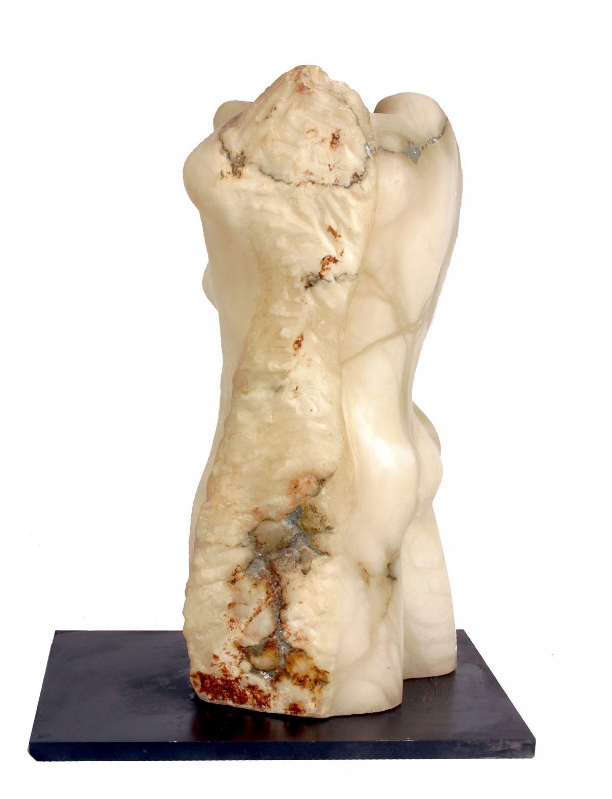 Evolution in Stone (Alabaster)