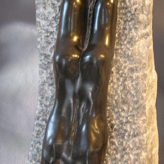 The Swimmer (African Serpentine)